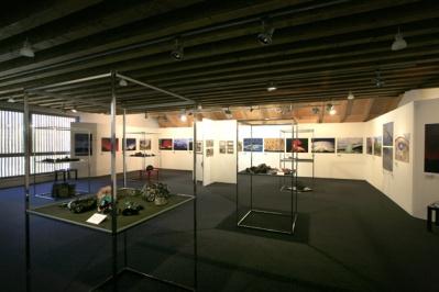 mostra vulcani a cortina 2011264